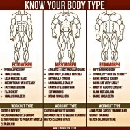 WHAT BODY TYPE ARE YOU???